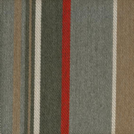 Grevilea Stripe Red